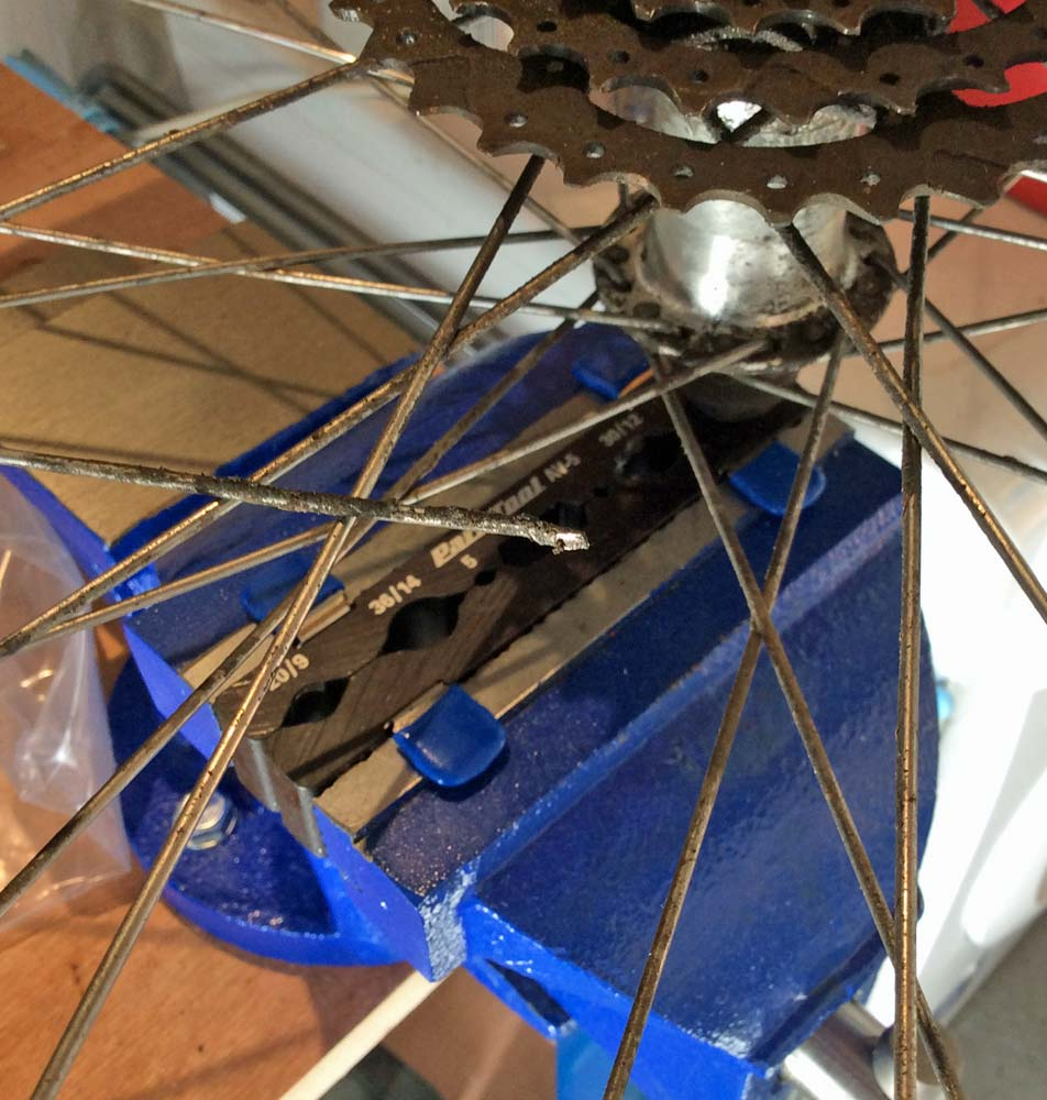 Cycle Wheel in Vice with broken spoke
